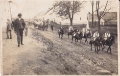 staročeské máje 10.5.1931- foto poskytl p.D.Marič
